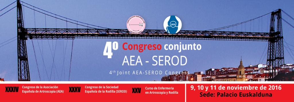 aea-serod-1024x356